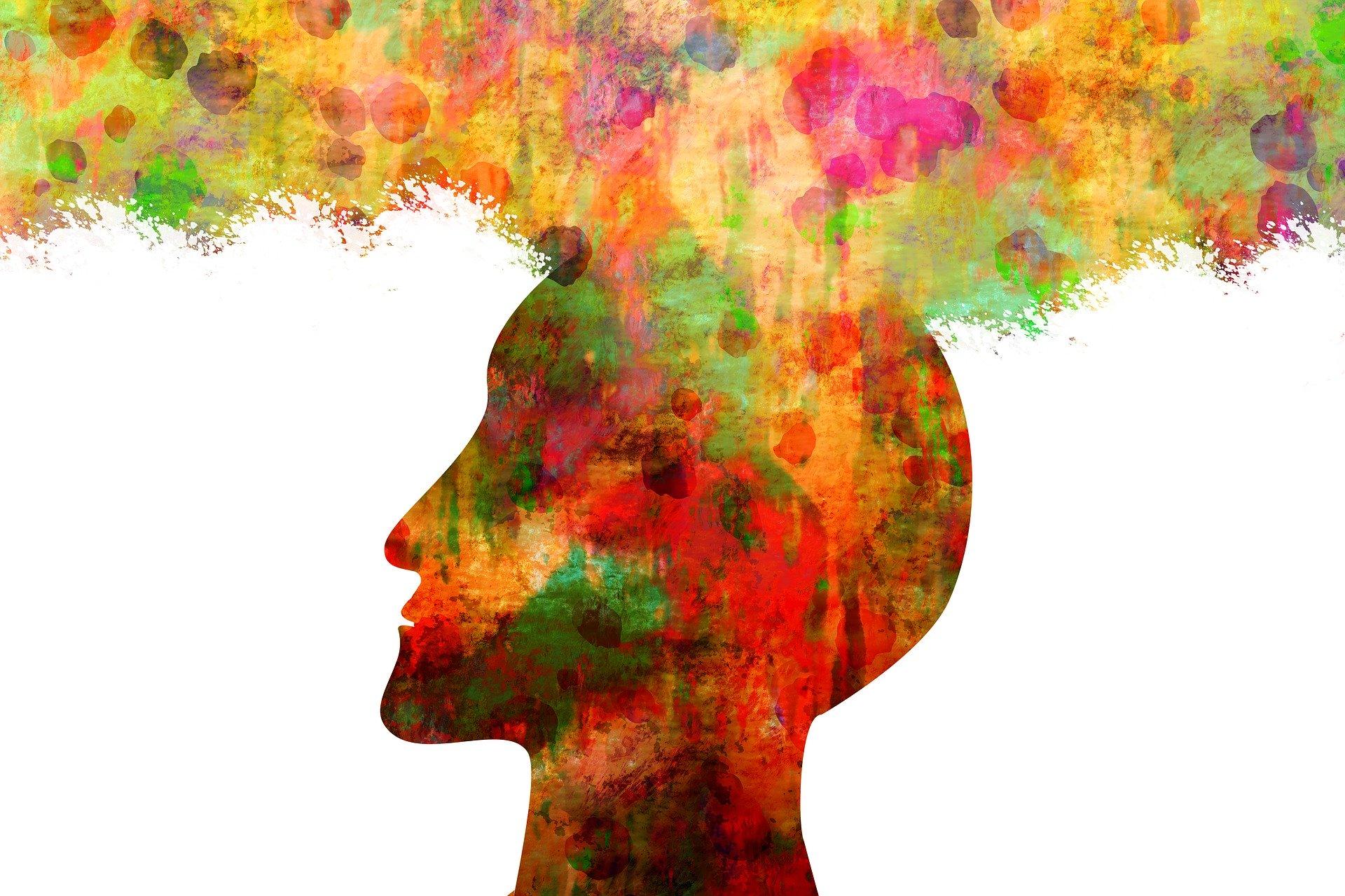 la psicologia y sus ramas