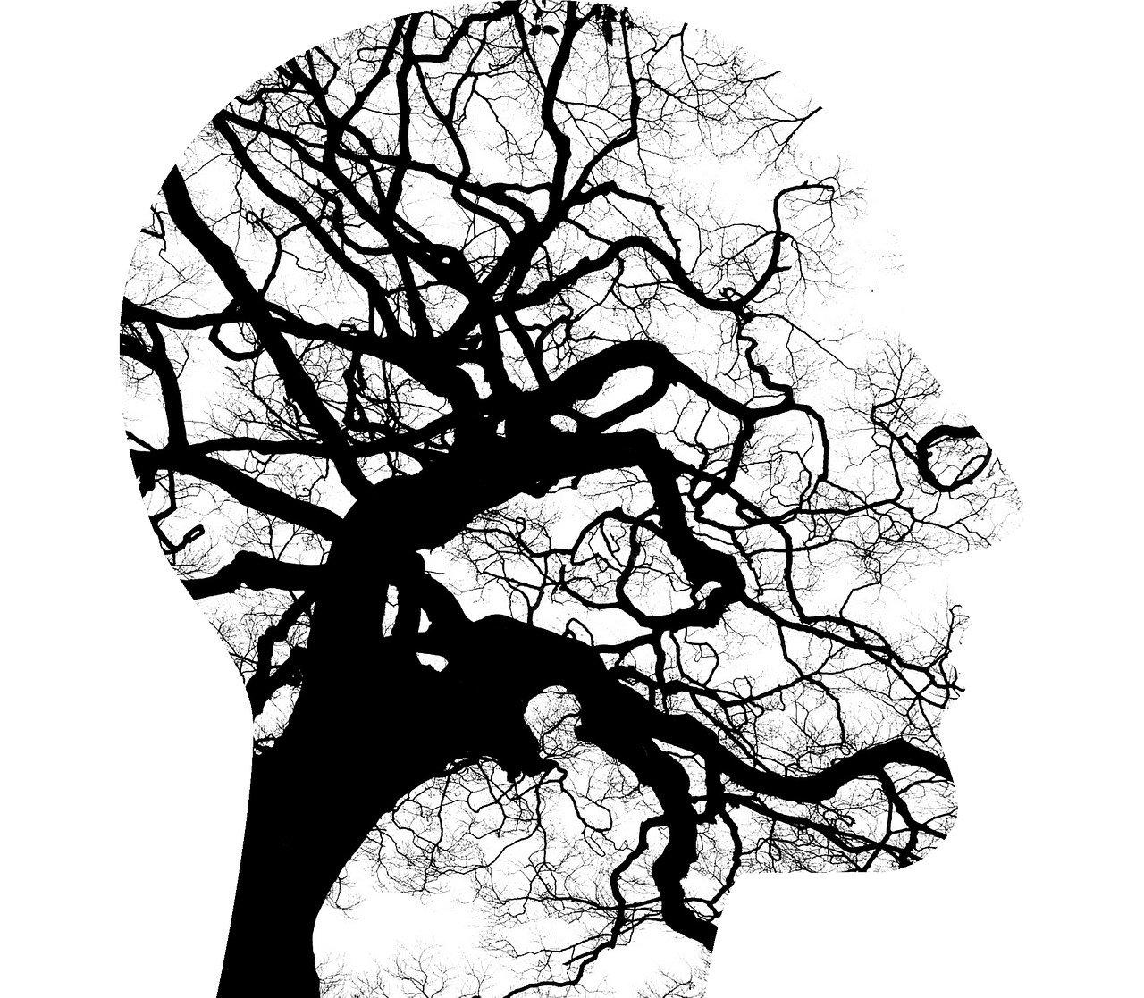 Armonización de nuestras emociones y pensamientos a través del PNL. Psicología IYouD.