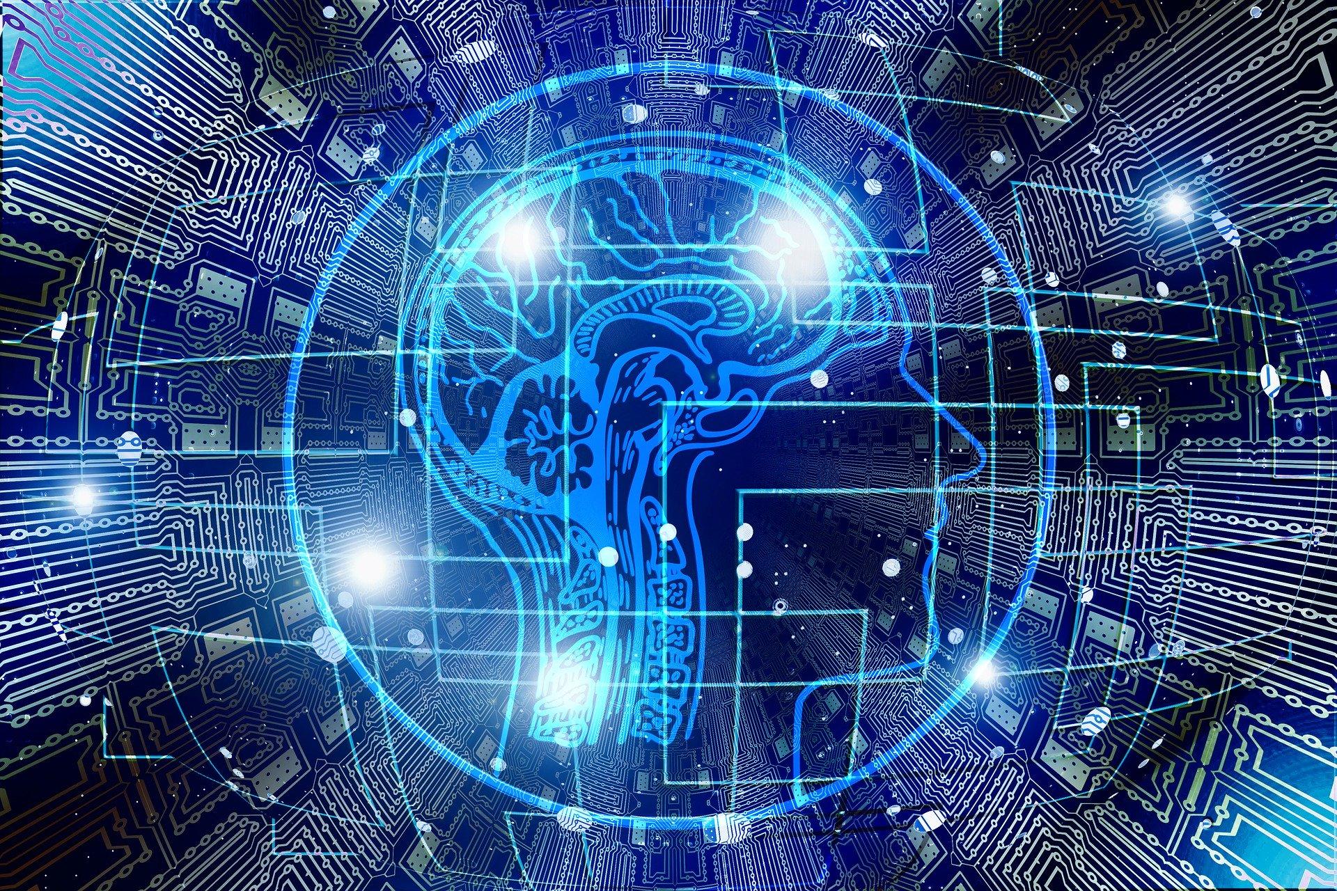 El cerebro y la Programación Neurolingüística (PNL)